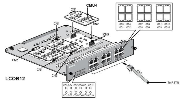 MG-LCOB12.jpg