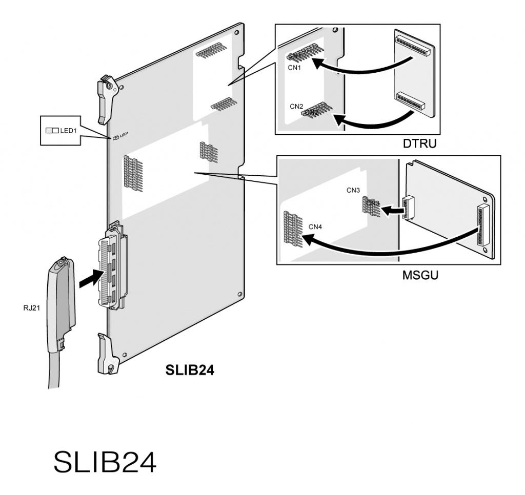 d300-slib24.jpg